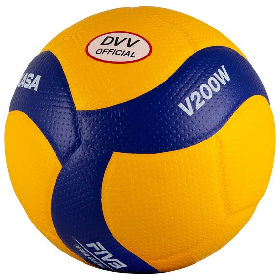 V200W-DVV Volleyball